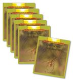 Guided Reading Set: Level G – Spiders Are Not Insects