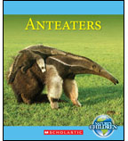 Nature's Children: Anteaters