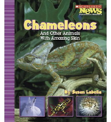 Scholastic News Nonfiction Readers®—Animal Survivors