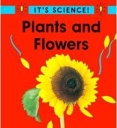 It's Science!: Plants and Flowers