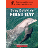American Museum of Natural History: Baby Dolphin's First Day