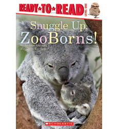 ZooBorns: Snuggle Up, ZooBorns!
