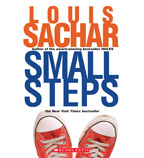 Holes: Small Steps