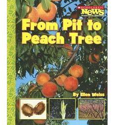 Scholastic News Nonfiction Readers—How Things Grow: From Pit to Peach Tree