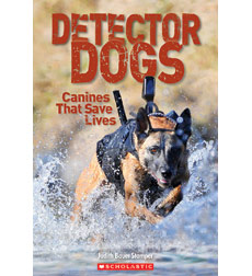 Detector Dogs