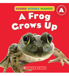 Guided Science Readers: Animals-Level A: A Frog Grows Up