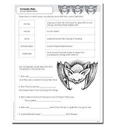 Science Vocabulary Readers: Fantastic Bats - Activity Sheet