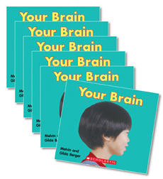 Guided Reading Set: Level G - Your Brain