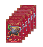 Guided Reading Set: Level W – Inkheart