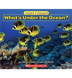 Now I Know: What's Under the Ocean?