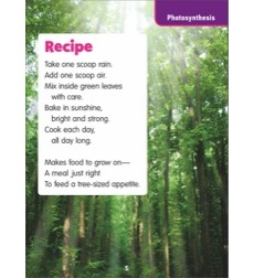Recipe (Photosynthesis): Science Poem