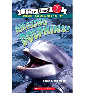Amazing Dolphins! SK (30)