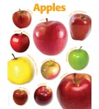Apples Photo Chart