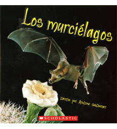 Guided Reading en Español: Los murciélagos