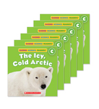 Guided Reading Set: Level C – The Icy, Cold Arctic