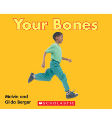 Scholastic Time-to-Discover Readers: Your Bones