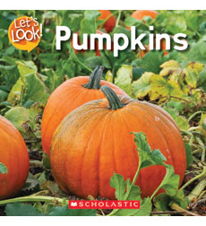 Let's Look-Fall: Pumpkins