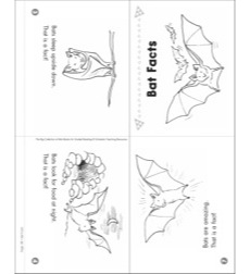 Bat Facts: Mini-Book for Guided Reading (Level C)