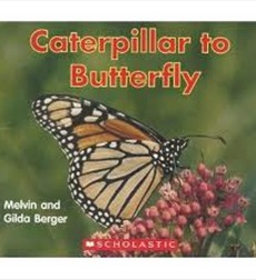 Scholastic Time-to-Discover Readers: Caterpillar to Butterfly