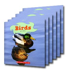 Guided Reading Set: Level A – Birds