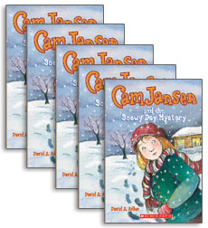 Cam Jansen and the Snowy Day Mystery TAKE HOME PACK