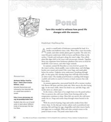 Pond (Turn-and-Learn Model): Animal Habitats