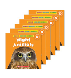 Guided Reading Set: Level D - Night Animals