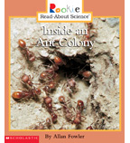 Rookie Read-About® Science—Animals: Inside an Ant Colony
