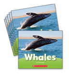 Guided Reading Set: Level H – Whales