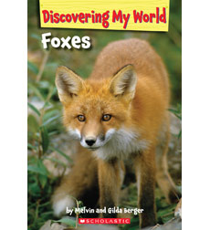 Discovering My World: Forest Animals: Foxes