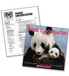 Panda Kindergarten - Literacy Fun Pack Express