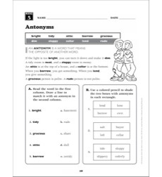 Antonyms: Grade 3 Vocabulary Packet