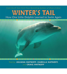 Winter's Tale: How One Little Dolphin Learned to Swim Again