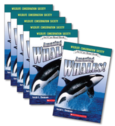 Guided Reading Set: Level K – Amazing Whales!