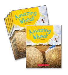Guided Reading Set: Level H – Amazing Wheat