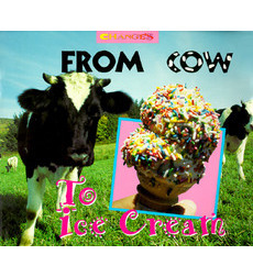 Changes: From Cow to Ice Cream