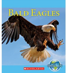 Nature's Children: Bald Eagles