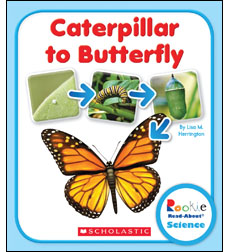 Rookie Read-About Science-Life Cycles: From Caterpillar to Butterfly