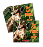 Guided Reading Set: Level J – You Call That a Pet?