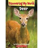 Discovering My World: Forest Animals: Deer