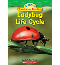 science vocabulary readers ladybug life cycle by justin mccory martin