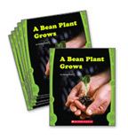 Guided Reading Set: Level E – A Bean Plant Grows