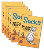 Guided Reading Set: Level O – Socks