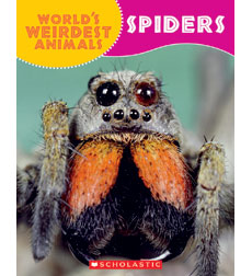World's Weirdest Animals: Spiders 9780545558372