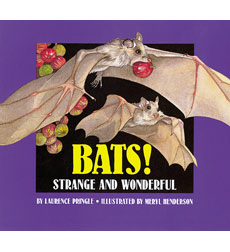 Bats: Strange and Wonderful