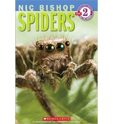 Scholastic Reader!® Level 2: Nic Bishop Spiders
