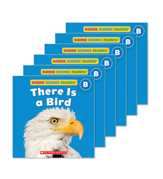 Guided Reading Set: Level B - There is a Bird