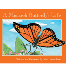 Nature Upclose: A Monarch Butterfly's Life