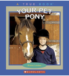 Your Pet Pony