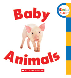 Rookie Toddler: Baby Animals